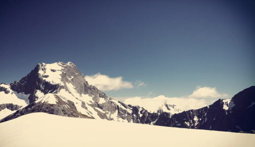 冬はフリーズの時期。だって地球上の生き物なんだもん。止まるよね。